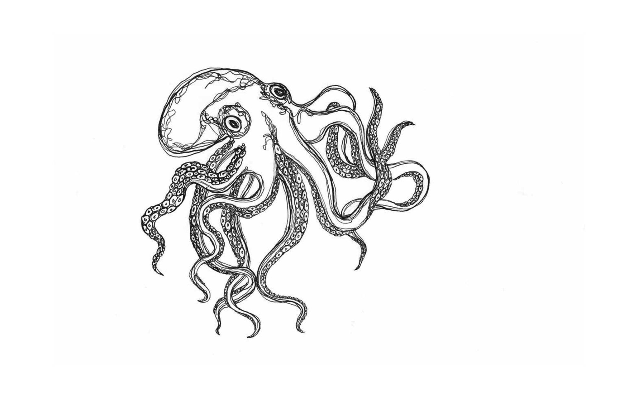 edi_octopus